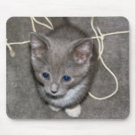 No lo hice Mousepad Tapete De Ratón