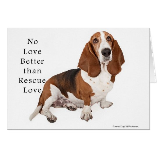 No Love Better than Rescue Love Card