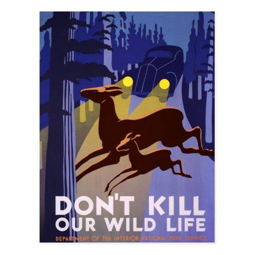 No mate a nuestra fauna tarjeta postal