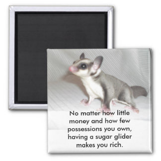 No matter how little money and how fe... 2 inch square magnet
