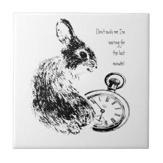 No me acometa, conejo de última hora, último de la azulejo cuadrado pequeño
