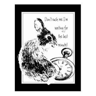 No me acometa, conejo de última hora, último de la postal