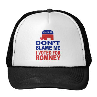 No me culpe que voté por Romney Gorra