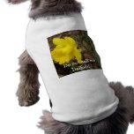 No me llame camiseta del perrito del narciso - Jon Camisas De Perritos