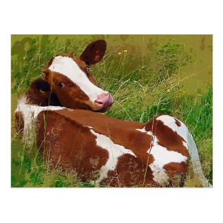 No me moleste vaca postal