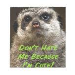 ¡No me odie porque soy lindo! Blocs