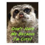 ¡No me odie porque soy lindo! Membretes Personalizados