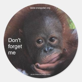 No me olvide (el bebé del primate) pegatina
