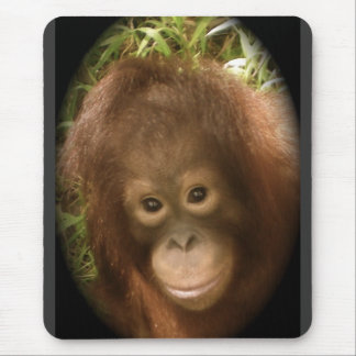 No Monkey Business Mouse Pad