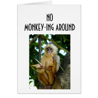 NO MONKEY-ING AROUND-LOVE YOU CARD