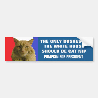 No More Bush In White House, Except Nip 2016 Bumper Sticker