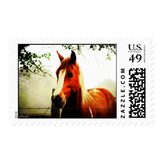 No more horsing around postage