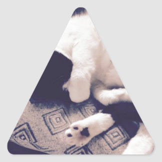 No More Pictures! Triangle Sticker