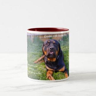 No Need for Brute Force mug
