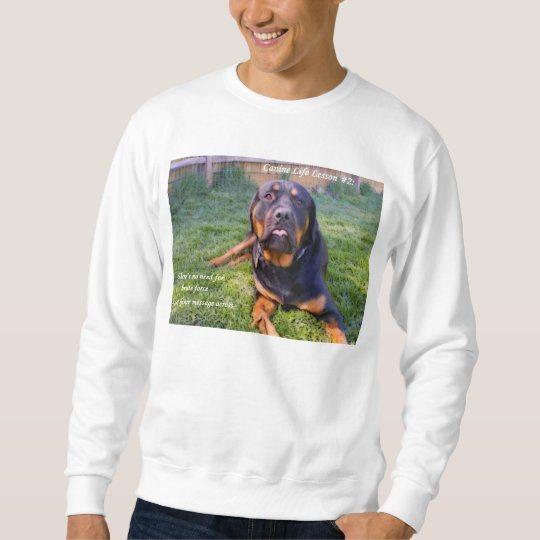 No Need for Brute Force sweatshirt