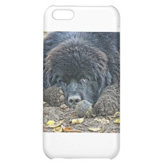 No one will play with me. iPhone 5C case