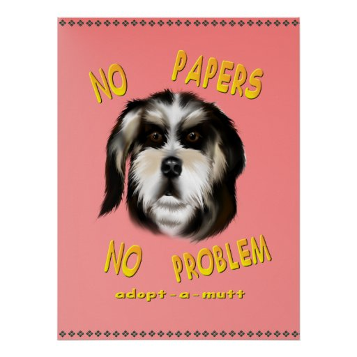 No Papers No Problem  Poster