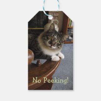 No Peeking Zorro Kitty Gift Tags