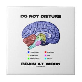 No perturbe el cerebro en el trabajo (el humor ana azulejo cuadrado pequeño
