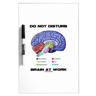 No perturbe el cerebro en el trabajo (el humor ana pizarra blanca