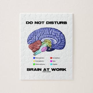 No perturbe el cerebro en el trabajo (el humor ana puzzle