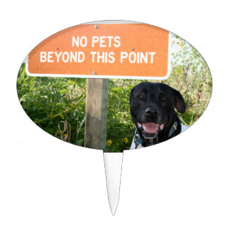 no pets with dog sign at beach funny animal image cake topper