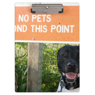 no pets with dog sign at beach funny animal image clipboard