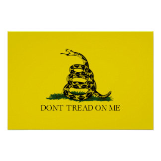 No pise en mí la bandera americana de Gadsden Póster