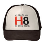 No place for H8 Mesh Hat