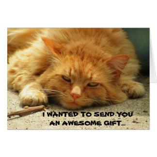 No podría enviarme, gatito divertido tarjeta de felicitación