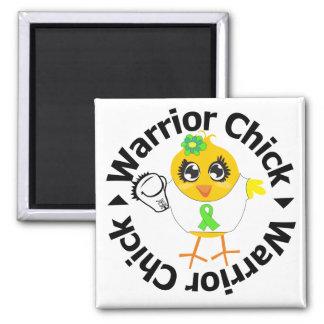 No polluelo del guerrero del cáncer del linfoma de imán