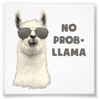 No Problem Llama Photo Print