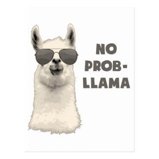 No Problem Llama Postcard