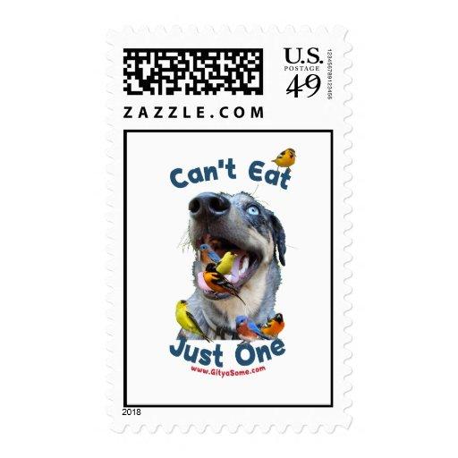 No puede comer apenas un perro de caza sellos postales