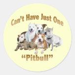 No puede tener apenas un Pitbull Etiqueta