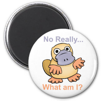 No Really... What am I? Platypus Magnet