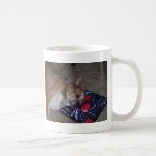 No remuevas el avispero taza de café