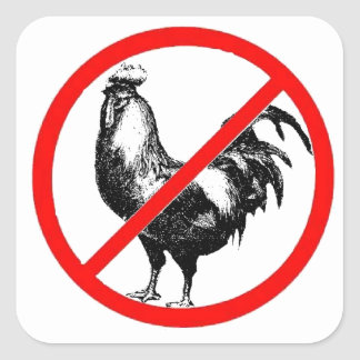 No Rooster?! Stickers
