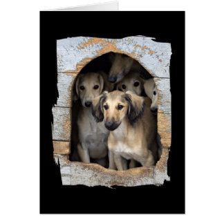 No Safety In Numbers Animal Notecards Card