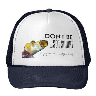 No sea un mar arrojan a chorros el gorra