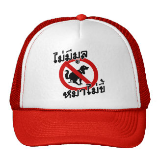 No Smoke Without Fire ♦ Thai Idiom ♦ Trucker Hat