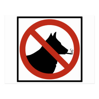 No Smoking Dogs Allowed Highway Sign Postcard