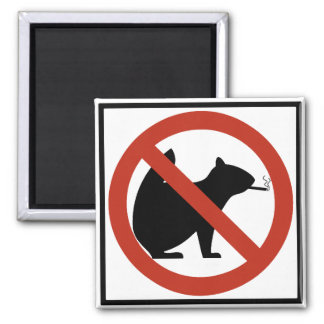 No Smoking Squirrels Allowed Highway Sign 2 Inch Square Magnet