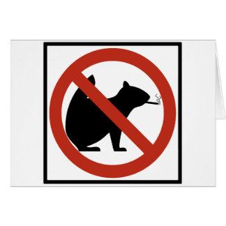 No Smoking Squirrels Allowed Highway Sign Card