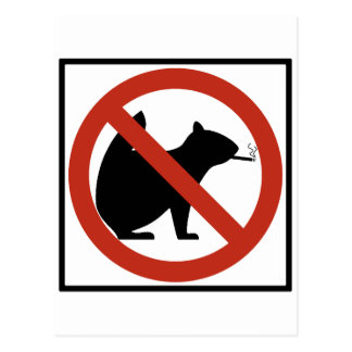 No Smoking Squirrels Allowed Highway Sign Postcard