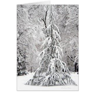 *No Snowflake Falls In the Wrong Place. Card