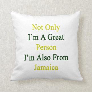 No sólo soy una gran persona que soy también de almohadas