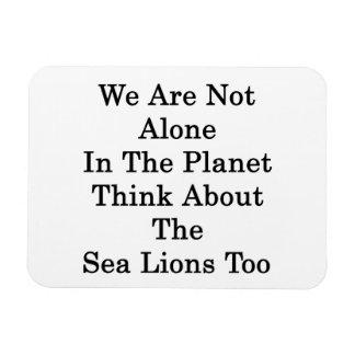 No somos solos en el planeta pensamos en el mar iman rectangular