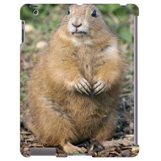 No soy gordo, yo soy caso mimoso del iPad Funda Para iPad