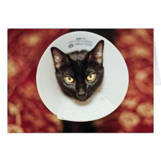 No soy un gato feliz tarjeta de felicitación